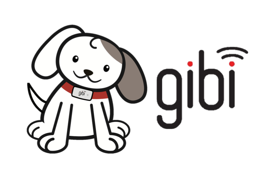 Gibi Technologies New Berlin Wisconsin